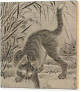 Cat Catching A Frog Wood Print
