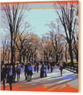 Central Park Mall Wood Print