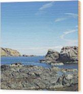 cliffs and coast at St. Abbs, Berwickshire Wood Print