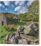 Cottage Ruin Snowdonia Wood Print