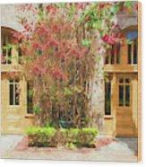 Courtyard Doors St Augustine 002 Wood Print
