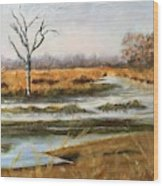 Early Spring On The Marsh Wood Print