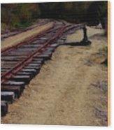 Ellsworth Tracks  Wood Print
