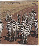 Grant Zebra Wood Print