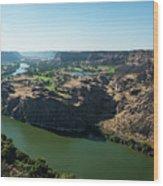Green Snake River Wood Print