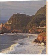 Heceta Head Lighthouse Wood Print