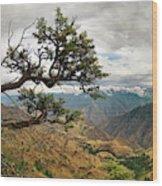 Hells Canyon Panoramic Wood Print