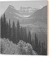 In Glacier National Park Wood Print