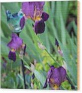 Iris In The Cottage Garden Wood Print