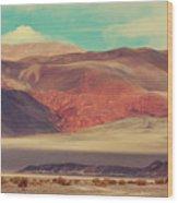 Landscapes Of Northern Argentina Wood Print