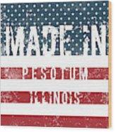 Made In Pesotum, Illinois Wood Print