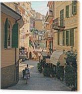 Manarola Italy Wood Print