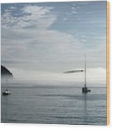Morning Mist On Frenchman's Bay Wood Print