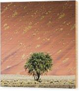 Namib Desert Wood Print