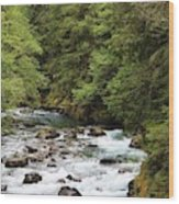 Ohanapecosh River Wood Print