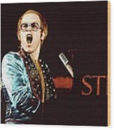 Photo Of Elton John Wood Print