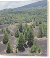 Photography Landscape Shot From The Etna National Park On Sicily Wood Print