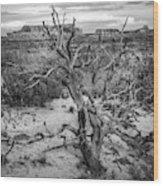 Pinyon Pine Wood Print