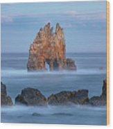 Playa Portizuelo - Spain Wood Print