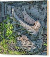 Pons Aemilius Wood Print