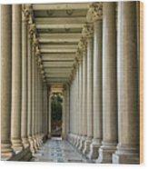 Portico Wood Print