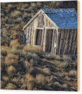 Rustic  4461 Wood Print