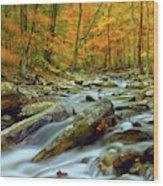 Seasons Wood Print