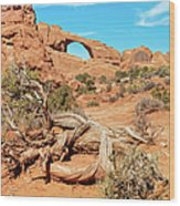 Skyline Arch, Arches National Park Wood Print