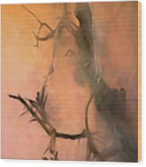 Swamp Woman Wood Print