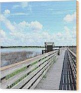 The Birdwalk Wood Print