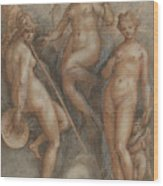 Three Goddesses  Minerva, Juno And Venus Wood Print