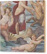 Triumph Of Galatea, Detail Wood Print