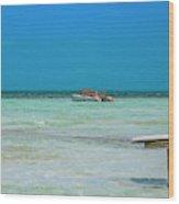 Tropical Days Bucket List Wood Print