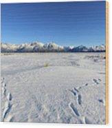 Turnagain Arm And Chugach Range From Hope Alaska Wood Print