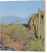 View To Four Peaks  Wood Print