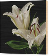 White Lily On Black. Wood Print