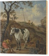 A White Horse Standing By A Sleeping Man  Wood Print