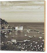 Avalon Harbor - Catalina Island, California Wood Print