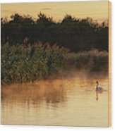Beautiful Dawn Landscape Image Of River Thames At Lechlade-on-th Wood Print