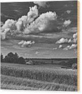 Beautiful Iowa Farm Scene Wood Print