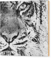 Black And White Half Faced Tiger Wood Print