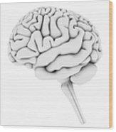 Brain, Artwork Wood Print