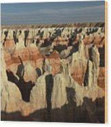 Coal Mine Canyon Near Tuba City Wood Print