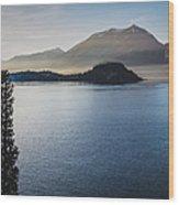 Como District Lake Wood Print
