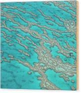 Great Barrier Reef, Queensland Wood Print