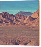 Landscapes Of Northern Argentina Wood Print