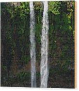 Mauritius. The 90 Meter High Twin Wood Print