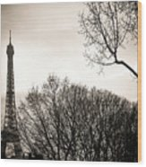 Paris  Eiffel Tower At Sunset Wood Print