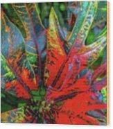 Plants And Leaves Hawaii Wood Print