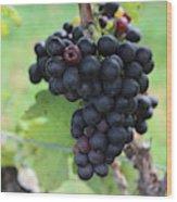 Purple Grape Bunches 17 Wood Print